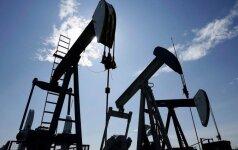 Naftos kainos vėl krenta