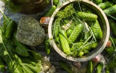 Anytos receptas: greitai rauginti agurkai