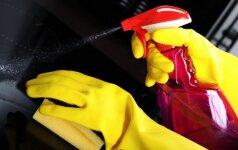 Išvalykime nešvarią orkaitę: natūralus valymo metodas