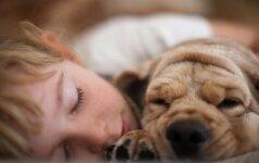 Vaikų bendravimas su šunimis: grėsmė ar lavinimas?