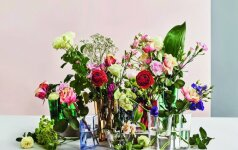 Kaip išsirinkti tinkamiausią vazą namams