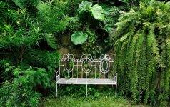 """""""Garden Style"""": kaip sklype išnaudoti pavėsį"""