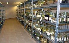 Tado Ivanausko muziejuje bus saugomi laukinių gyvūnų audiniai