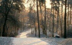TOP 7 Lietuvos žiemos objektai, kurie kaip magnetas traukia lankytojus