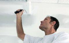 Dažų luboms pasirinkimas – ekspertų patarimai