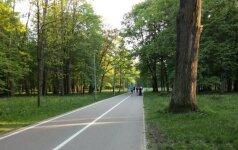 Lietuvoje gali atsirasti dar vienas kurortas