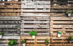 Kaip išsirinkti medinius padėklus įvairiems projektams?
