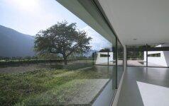 Vitrininiai langai: kokie yra jų privalumai bei trūkumai?