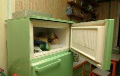 Elektros taupymo receptai: pasikeiskite šaldytuvą ir galvokite apie lemputes