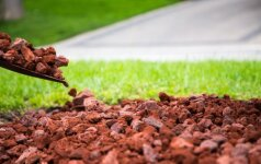 Ką daryti, kai kaimyno akmenys griūva į svetimą sklypą