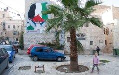 41. Palestina