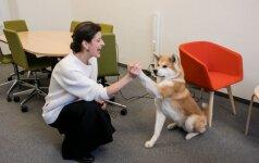 Atėję apsidrausti turėjo nustebti: klientus pasitiko šunys ir tarantulas
