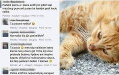 Feisbuke – pykčio lavina: moteris pasiūlė ypač žiaurų būdą, kaip naikinti kates