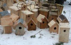 Į šiltus namus jau gali grįžti ir smulkūs sparnuočiai, ir pelėdos