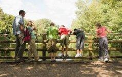 Š. Laužadis: mokinius reikia mokyti remiantis gamtiškąja baltų pasaulėžiūra