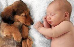 Kokios veislės šunį rinktis, jei namuose auginate vaiką