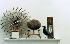 Paukštis, kuris tapo dizaino ikona