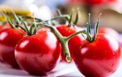 Kiekvieną dieną mes valgome nuodus: kaip atskirti genetiškai modifikuotus pomidorus