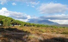 Korsika – rojus tarp jūros ir kalnų