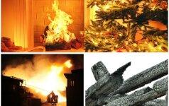 Mirtį sėjantis Kalėdų atributas - kiekvienuose namuose