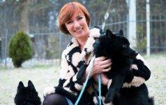 Šunų fitnesas – ne sportas, o jų reabilitacijos būdas