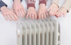Paprastos gudrybės, kad už šilumą netektų mokėti dvigubai