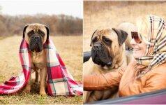 Širdį verianti istorija: įamžino paskutines akimirkas kartu su mylimu šunimi