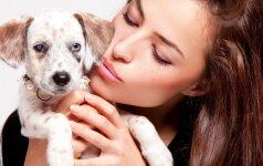 9 šunų veislės, nenorintiems plaukų kiekviename pakampyje