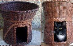 Pynimas iš laikraščių: namelis katei