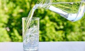 Seimas ūkininkams davė nemokamo vandens