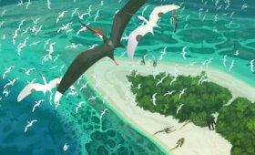 Mokslininkai papasakojo apie paskutines pterozaurų viešpatavimo dienas