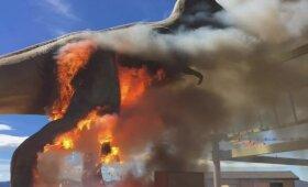 Muziejaus tiranozaurą prarijo liepsnos