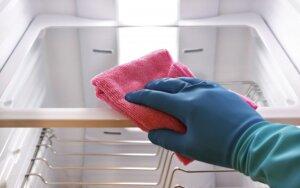 Naminė priemonė šaldytuvui išvalyti
