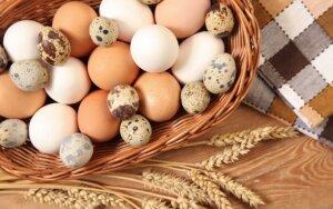 Ar tikrai kiaušiniai kaloringi ir grasina mums cholesterolio bomba?