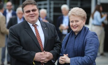 Linas Linkevičius, Dalia Grybauskaitė