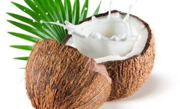 3 egzotiškos sriubos su kokosų pienu, kurias paprasta pagaminti