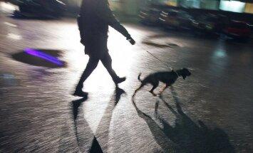 Žmogus vedasi šunį