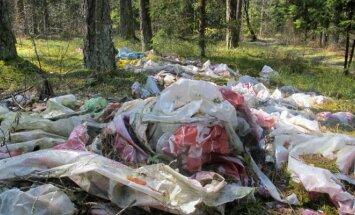 Šiukšlės miške (asociatyvi nuotr.)