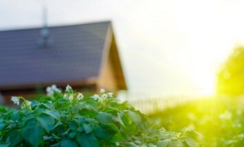 Sodininkų bendrijų gudrybė: bendrojo naudojimo žemė įsigyjama apgaulės būdu