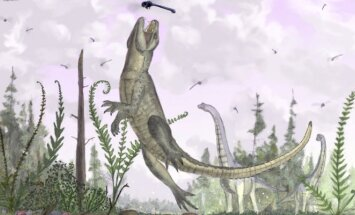 Vabzdžiaėdis dinozauras