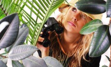 Naminėse džiunglėse veiskite gerinančius savijautą augalus.
