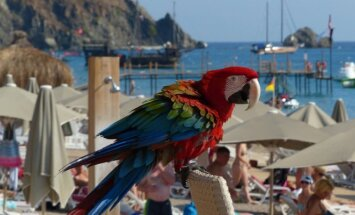 Turistai aplenkia Turkiją