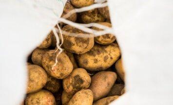 Bulvių nuoviras gali būti puikiausia skalbimo priemone