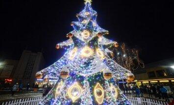 Palangoje įžiebta Kalėdų eglutė