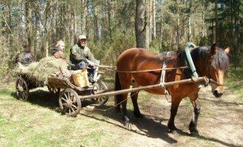 R. Norkūnui mašinos nereikia - į darbą jis atvažiuoja vežimu