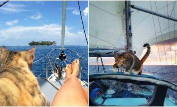 Moteris su katė keliauja aplink pasaulį