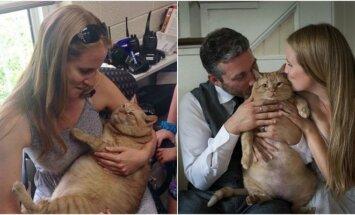 Vestuvių fotosesija su storu katinu
