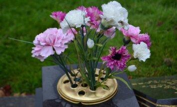 Kapinaitės Anglijoje: plastikinės gėlės populiaresnės nei gyvos