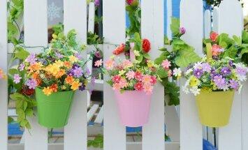 Pasidaryk pats: vazonų atnaujinimas