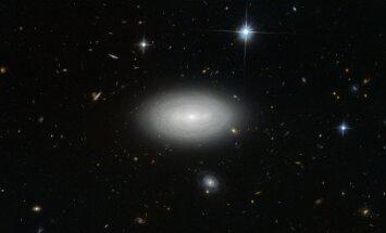 Vieniša galaktika